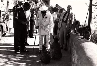 Press photo of Churchill with Aristotle Onassis and Barbary macaques on Gibraltar in 1958